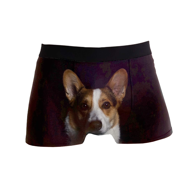 SHRGRGR Mens Underwear Blue Corgi Boxer Briefs Short Underpants