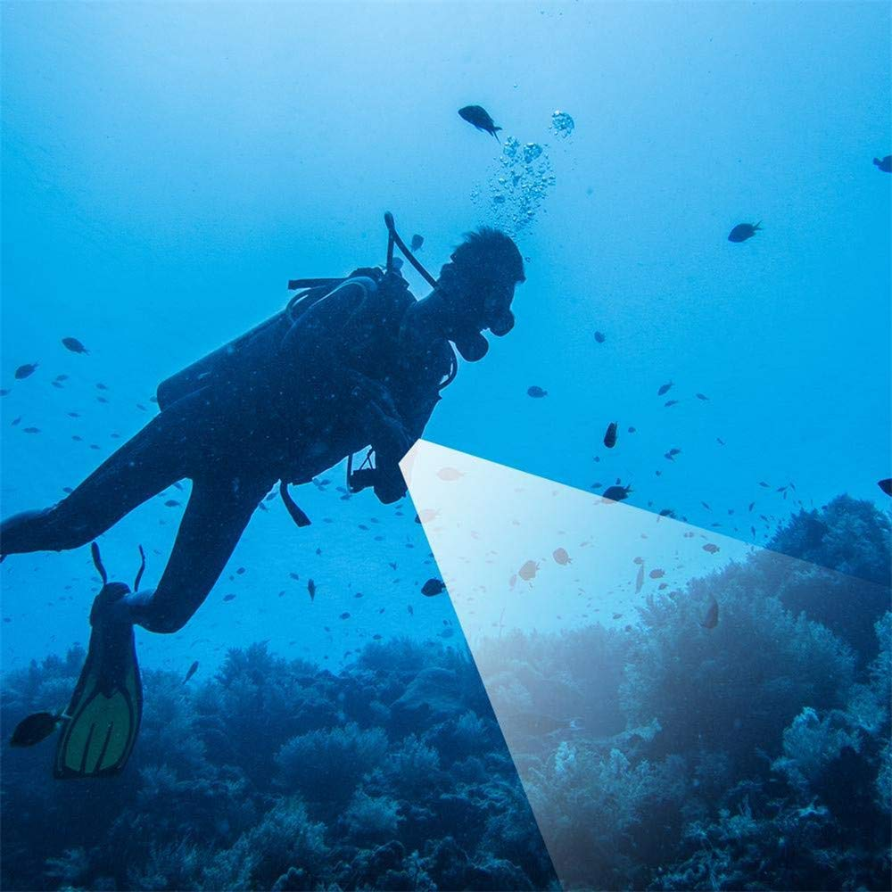 ... de buceo luces de fotografía profesionales resaltar linterna de buceo reflector al aire libre deportes submarinos luces de aventura: Amazon.es: Hogar