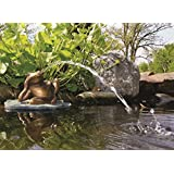 Aquascape 78017 Poly-Resin Spitter for Pond, Landscape, Garden, and Water Features, Lazy Frog on Lily Pad