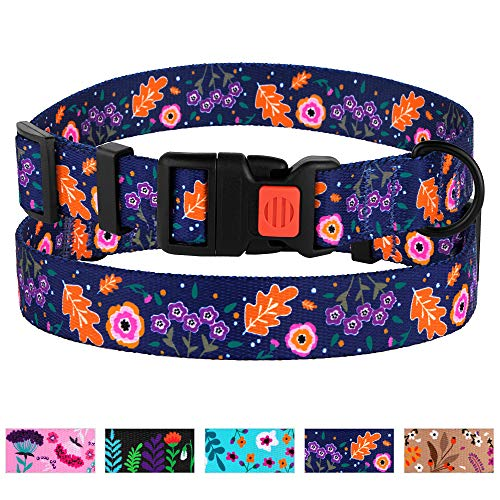 CollarDirect Floral Dog Collar Nylon Pattern Flower Print Adjustable Pet Collars for Dogs Small Medium Large Puppy (Neck Fit 12