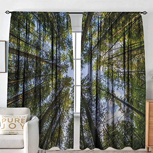 Petpany Blackout Curtains Nature,Wild Jungle Moss Forest Crown Trees Leaves Nature Photo Artwork Print,Sky Blue and Forest Green,Rod Pocket Curtain Panels for Bedroom & Kitchen 54