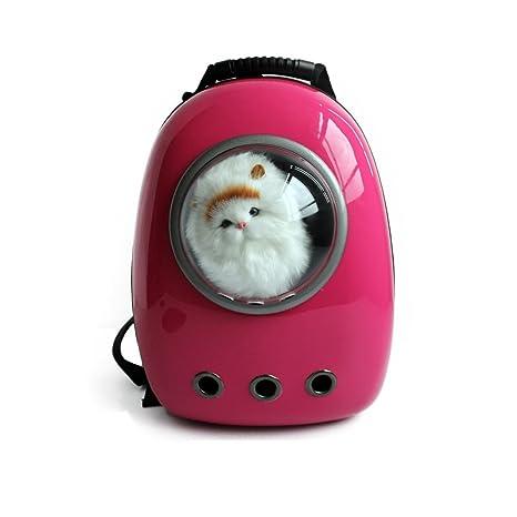 Candora TM portadores de la burbuja Pet mochila de viaje con ventana de cúpula para gatos y perros pequeños: Amazon.es: Productos para mascotas