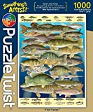 1000 piece fish puzzles - Something's Amiss 1,000 Piece Jigsaw Puzzle - Fish Frenzy