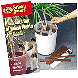 Pioneer Pet Sticky Paws for Plants Cat Deterrent