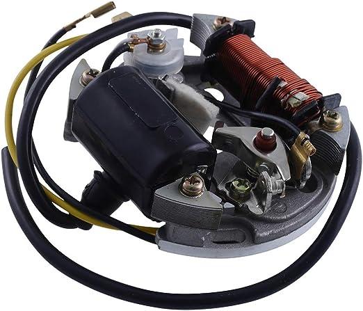 2extreme 6v 17w Lichtmaschine Zündung Zündspule Kompatibel Für Puch Maxi Hercules Mofa Prima 2 3 4 5 Sachs 505 Auto