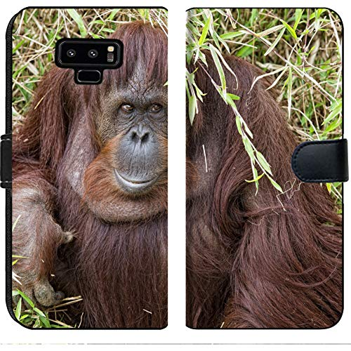 Luxlady Samsung Galaxy Note 9 Flip Fabric Wallet Case Image ID: 32011941 Orangutan Portrait While Looking at yuo ()