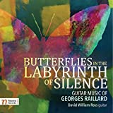 Butterflies in the Labyrinth of Silence