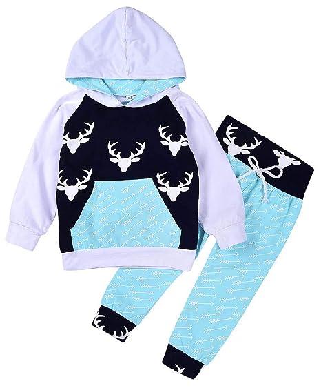 00a3330d9 2PCs Toddler Infant Baby Boys Dinosaur Long Sleeve Hoodie Tops Sweatsuit  Pants Sweatshirt Clothes Outfit Set