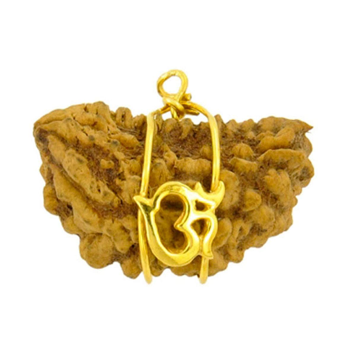 Gemsonclick Natural 1 Mukhi One Face Rudraksha Anhä nger Gebetskette OM Gold plattiert Medaillon Healing Chakra