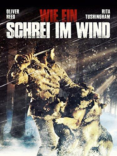 Wie ein Schrei im Wind Film