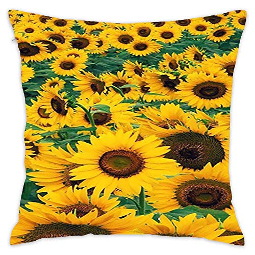 Sunflower Wallpaper Decorative Cotton Square Throw Pillow Case Cover 18x18 Inch Cushion Slipcover Home Decor Pillowcase Cover ()
