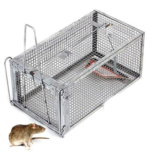 RANRANHOME Captura De Trampas Humanas, Ratas Ratones Atrapar Rata ...