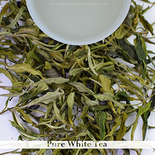 Buy in Bulk Wholesale Rate : White Tea Loose Leaf - Organic Darjeeling Leaves - 500gm (17.63 oz) - 250 cups | Least Processed - Sun Dried | Darjeeling Tea Boutique by Darjeeling Tea Boutique
