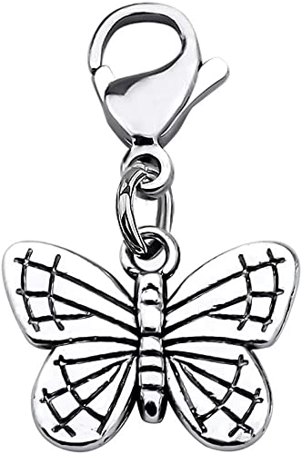CHOORO Butterfly Jewelry Beautiful Butterfly Zipper Pull Butterfly Zipper Charm Memorial Remembrance Gift Inspirational Gift for Nature Lover (Butterfly Zipper Pull)
