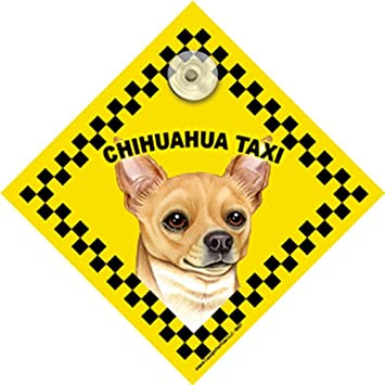 Chihuahua (tan) ventana Swinger Taxi perro señal: Amazon.es ...