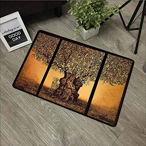 LOVEEO Outside Doormat,Tree of Life Triptych of an Old Mature Olive Tree Mediterranean Greece Style Nature Graphic Decor,for Outdoor and Indoor,16