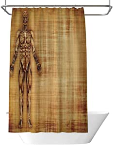 June Gissing Human Anatomy Decorative Shower Curtain Grunge Old Parchment Effect Skeleton Muscles of Human Body Retro Art Print Home Shower Curtain W63 x L70 Inch Light Brown