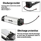 UnitPackPower 36V 10AH E-Bike Lithium ion Battery