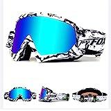 Lunettes de protection IHRKleid - Pour moto, snowboard, ski, dirt bike - Protection contre la poussière et le vent - Idéales pour sport d'hiver.