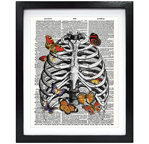 Art Cage Wall (Susie Arts 8X10 Unframed Butterfly in rib cage Upcycled Vintage Dictionary Art Print Book Art Print Funny Art Print Anatomy Wall Art V136)