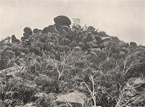 1908 Print (Buffalo Mountains. Big Gun Hill looking North. Victoria, Australia. - 1908 - old print - antique print - vintage print - Australia art prints)