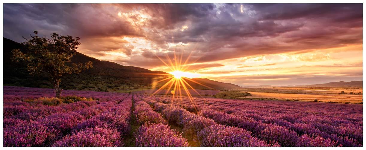 Wallario Glasbild Lavendelfeld bei Sonnenuntergang - Sonnenstrahlen - 32 x 80 cm in Premium-Qualität  Brillante Farben, freischwebende Optik