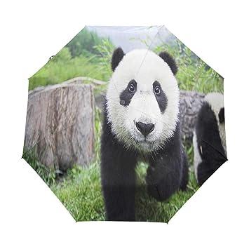Amazon.com: Paraguas negro y blanco Panda Golf Viaje Sol ...