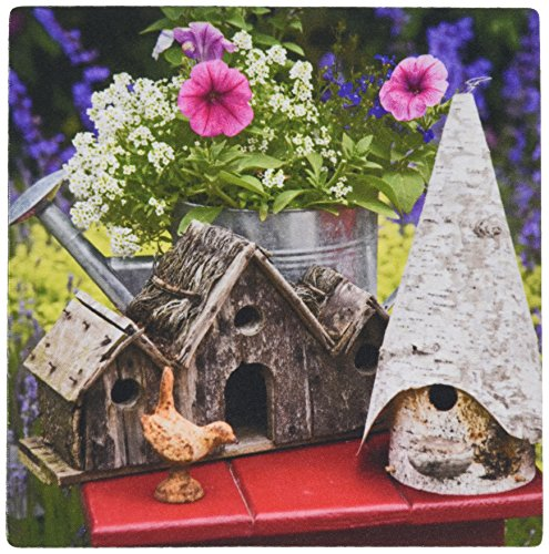 Price comparison product image 3dRose LLC 8 x 8 x 0.25 Bird Houses and Planter on Garden Table Jaynes Gallery Mouse Pad (mp_83360_1)