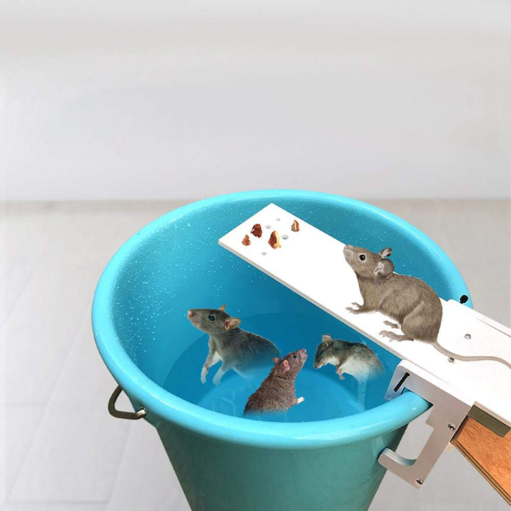 FOONEE Humane Mouse Trap, Walk The Plank Mouse Trap ...