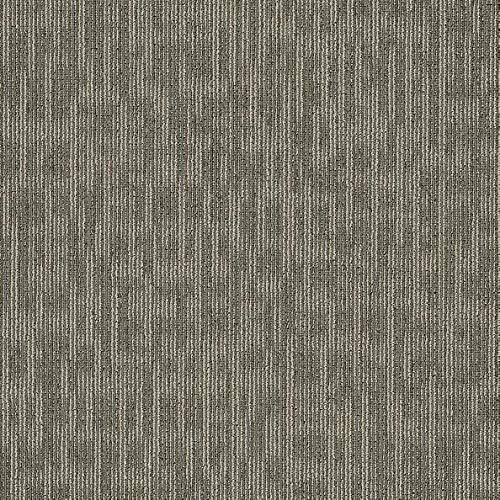 Shaw Genius Carpet Tile Masterful 24