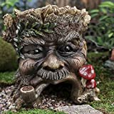 Pipe Smoking Garden Tree Spirit Toad House