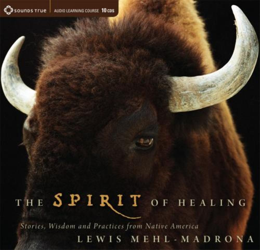 The Spirit Of Healing Stories Wisdom And Practices From Native