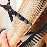 AuroTrends-Professional-Barber-Razor-Edge-Hair-Cutting-Shears-setHairdressing-Scissors-and-Hair-Thinning-ScissorsShear-Set-Free-CaseHairclipsCombCleaning-Cloth