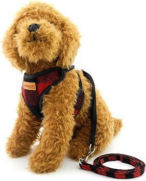 Arnés para perro pequeño, con malla a cuadros, chaleco y correa ...