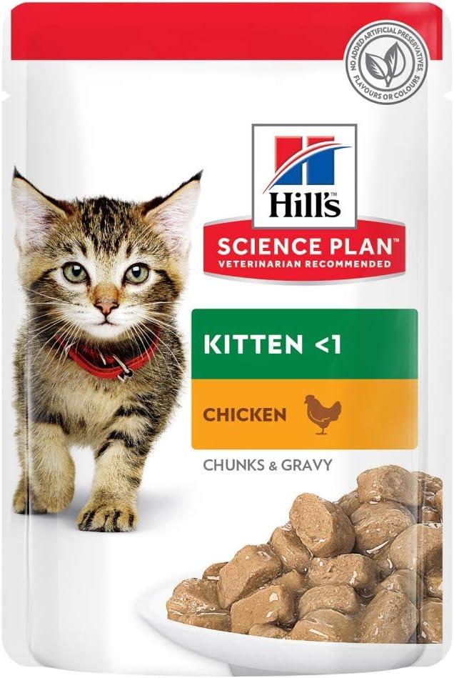 Hill's Feline Kitten Chicken Comida para Gatos - 12 unidades x 85 gr