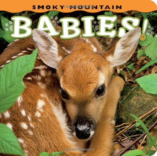 (Smoky Mountain Babies! (Babies! Animal))