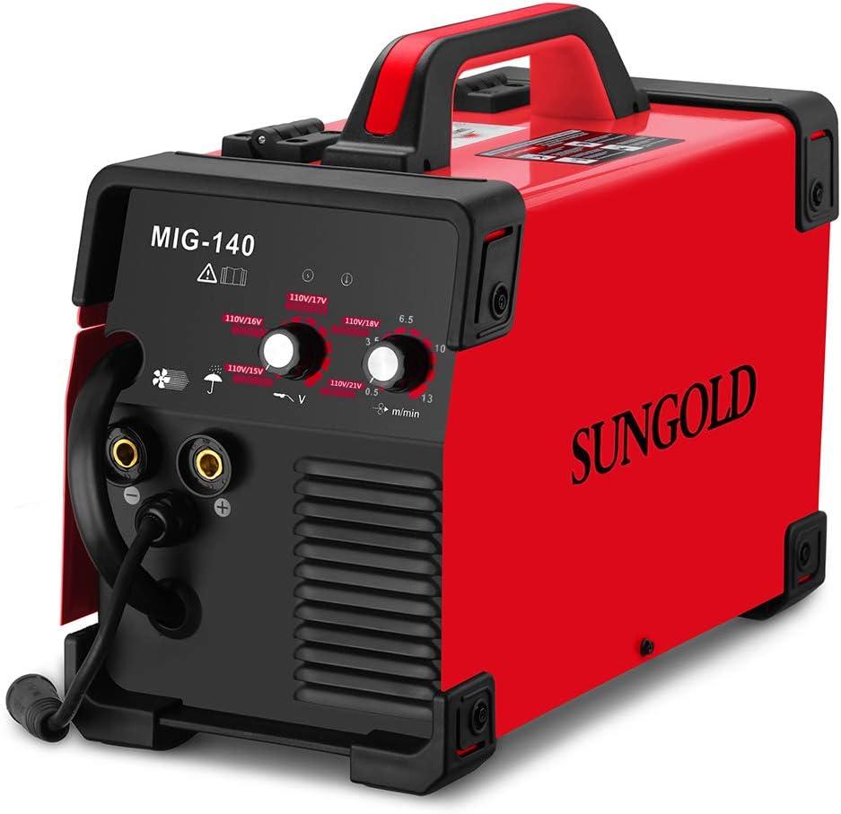 SUNGOLDPOWER 110V/220V MIG Welder