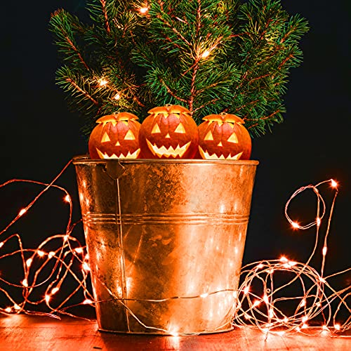 HSicily Fairy Lights Plug in, 8 Modes 33ft 100 LED USB String Lights with Adapter Remote Timer Orange Twinkle Lights for Halloween Christmas Thanksgiving Bedroom Patio Wedding Party Indoor Outdoor