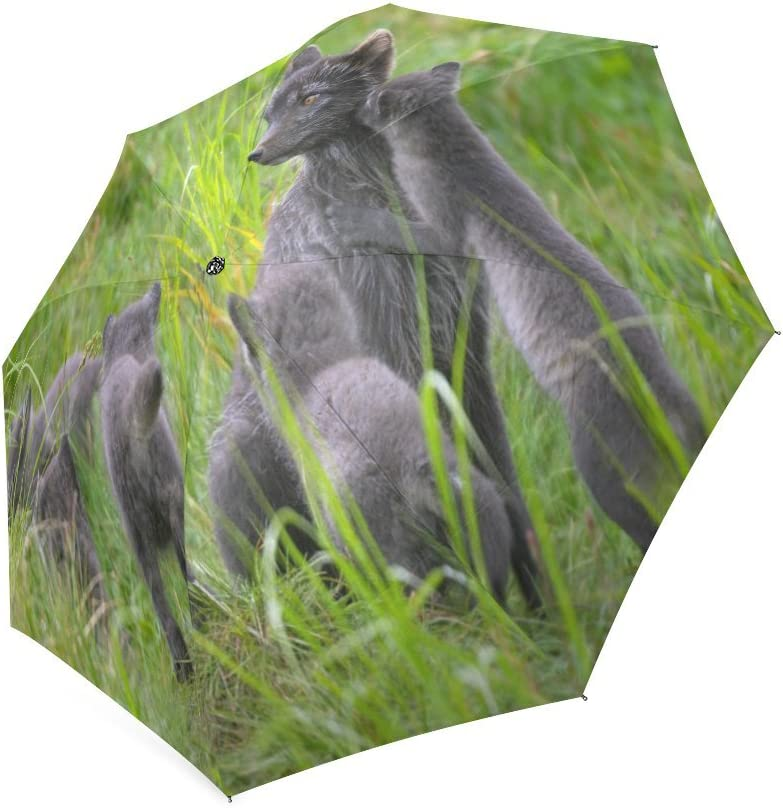 Custom Cute Arctic Fox Cubs Compact Travel Windproof Rainproof Foldable Umbrella