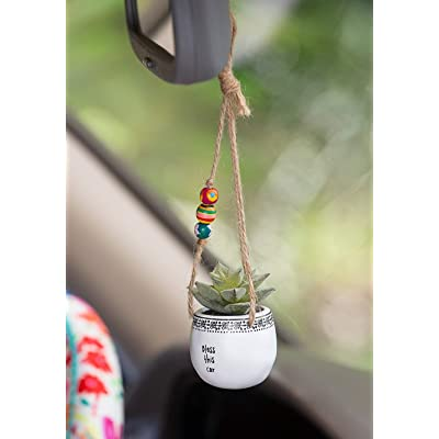Natural Life Mini Macramé Faux Succulent Pot Holder for Car Rear View Mirror (Bless This Car): Kitchen & Dining