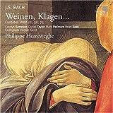 Bach: Weinen Klagen - Cantatas BWV 12, 38, 75