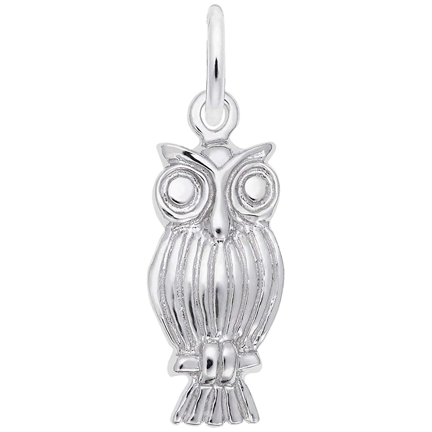 Rembrandt Charms Owl Charm