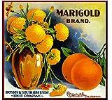 Corona, Riverside County Marigold Flowers Orange Citrus Fruit Crate Box Label Art Print