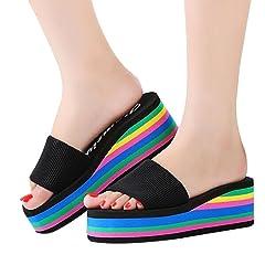 7fb10721f62201 Women Summer Flip Flops Sandals
