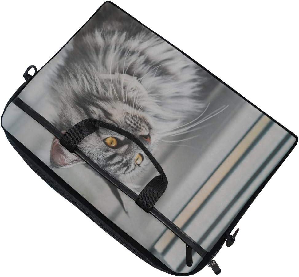 College Students Busine Laptop Bag Vintage Style Photo Beautiful Maine Coon 15-15.4 Inch Laptop Case Briefcase Messenger Shoulder Bag for Men Women
