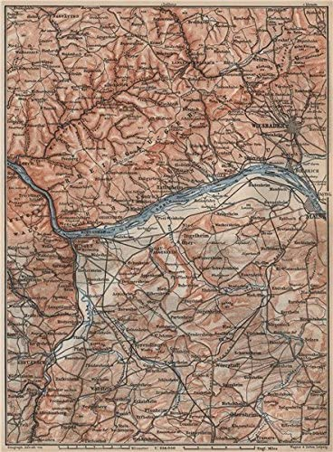 Amazon Com The Rheingau Topo Map Wiesbaden Lorch Rudesheim Mainz