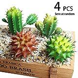 Conjugal Bliss 4PCS Realistic Fake Mix Of Mini Fleshy Plants Artificial Cactus Plants Shop Party Family Garden Wedding Diy Decoration Randomly Sent (Plastic) (GREEN)