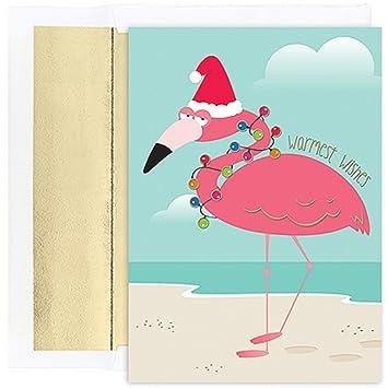 Flamingo Christmas Cards.Jam Paper Funny Flamingo Christmas Card Pack 18 Holiday