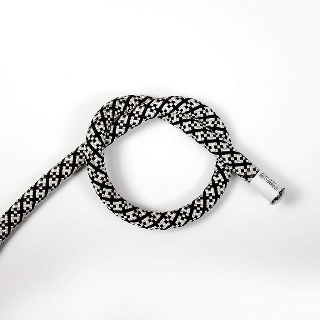 - TLMYDD Corde de Levage électrique, Corde de Travail aérien, Corde de Nylon, diamètre 11mm, Longueur 10-100m Cordes (Taille   10m) 10m