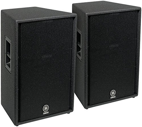 Yamaha 15 Inches Two Way - 4